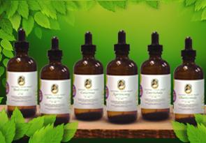 Herbal Extracts / Tinctures - Maria Treben's