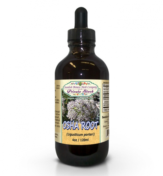 Osha Root, tincture (4oz/118ml) - Swedish Bitters Herb Company Private Stock